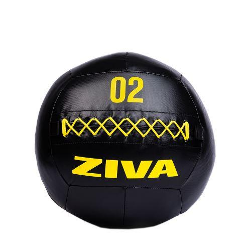 ZIVA Performance wall ball