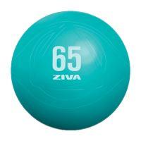 ZIVA gymnastický míč 65 cm