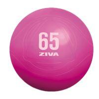 ZIVA gymnastický míč 55 cm
