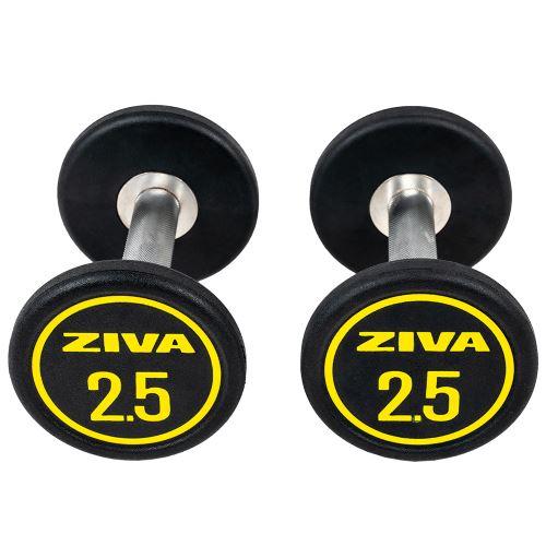 ZIVA Performance Rubber Dumbbel 22,5 kg